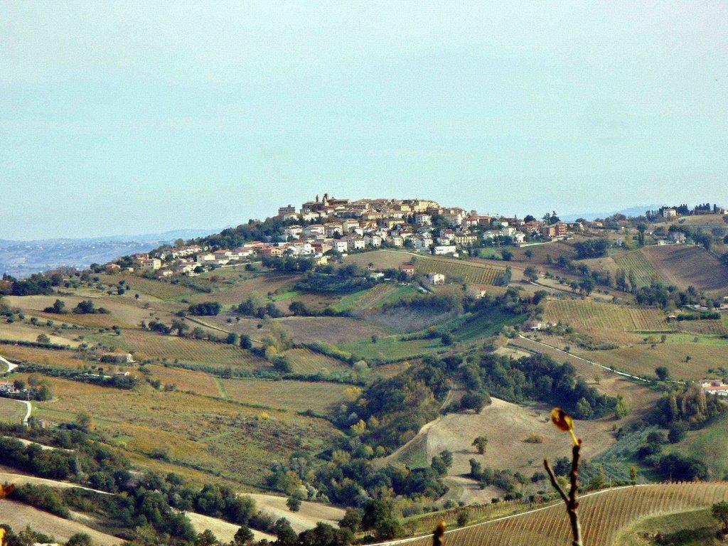Panoramica_Staffolo