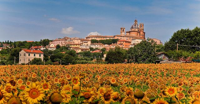 Panoramica di Monte San Vito