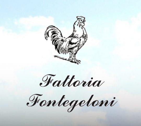 Fattoria Fontegeloni Agriturismo