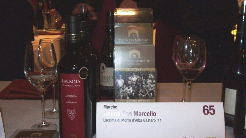 Tenuta San Marcello