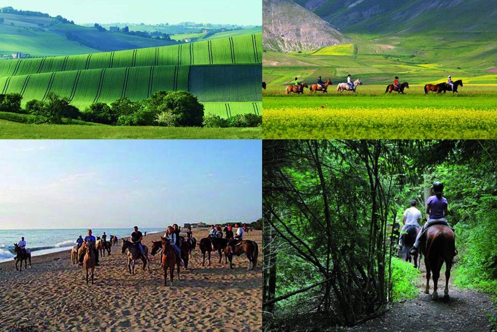 Dove fare piacevoli passeggiate a cavallo nelle Marche