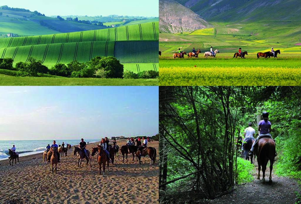 passeggiata_a_cavallo_nelle_marche