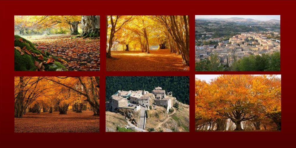 Le Marche in autunno: un viaggio tra i colori