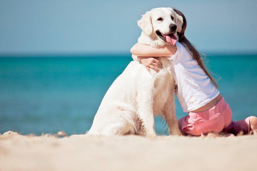 Spiagge Pet Friendly nelle Marche