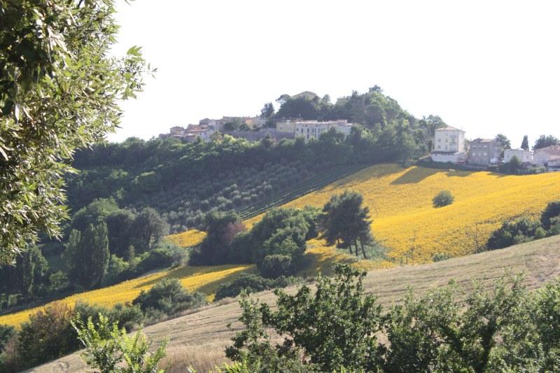 belvedere-fogliense-tavullia