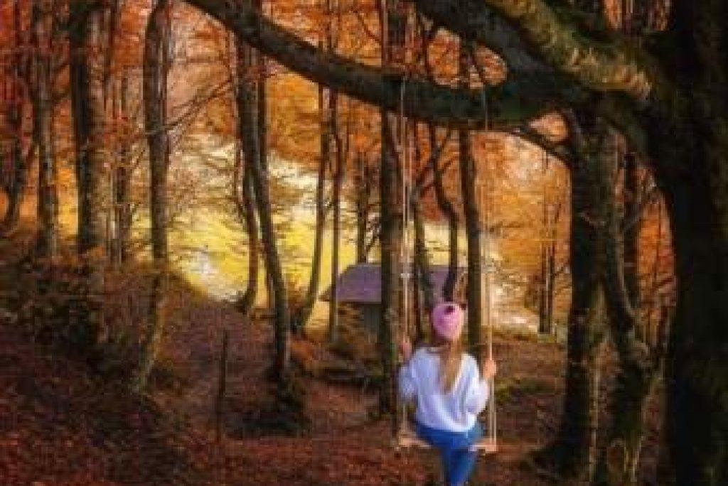 Forest Bathing nelle Marche, i posti ideali dove provarlo