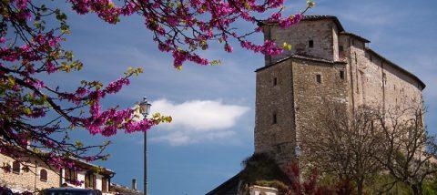Frontone-Rocca
