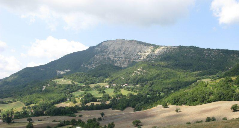 Monte_Carpegna_II